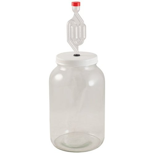 1 Gallon Glass Jar Fermenter Kit - FE307